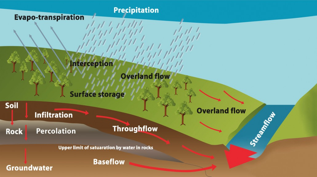 A-Level water cycle