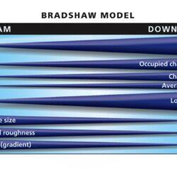 Bradshaw Model